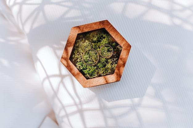 Два обручальных кольца в деревянной коробке с моховым растением на белой стене с солнечным светом