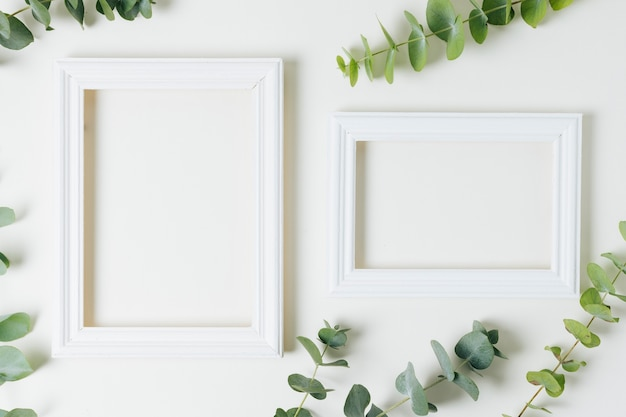 Two white border frames with green leaves on white background