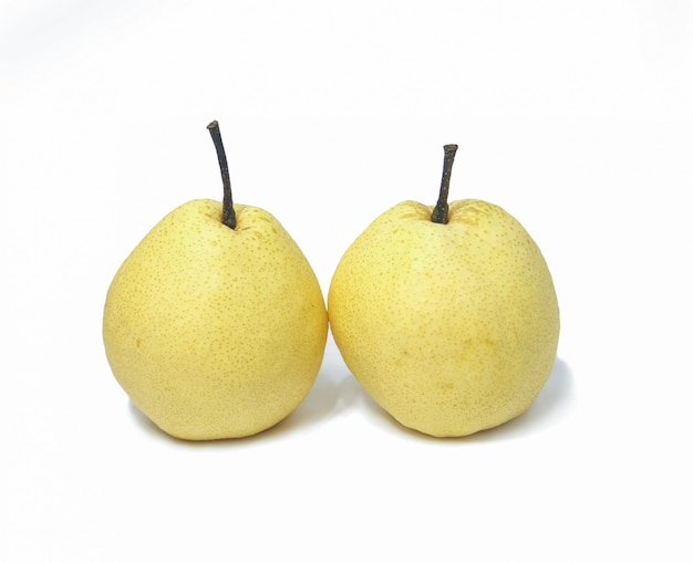 Two white chinese pear fruits on white background