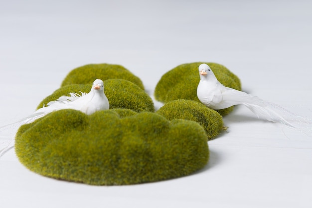 白い背景の上の緑の苔で覆われた岩の装飾的なディスプレイで平和、調和と希望を象徴する2つの白い鳩