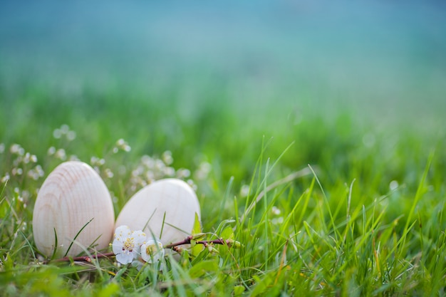 Two white easter eggs in green grass