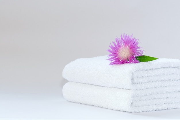 Two white neatly folded terry towels with a pink cornflower