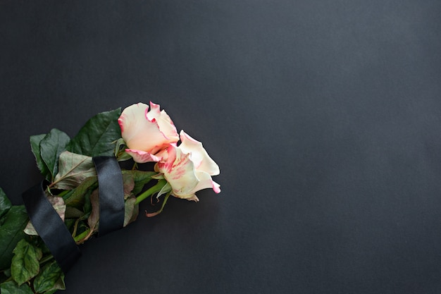 Two white-pink roses on a black background with copyspace
