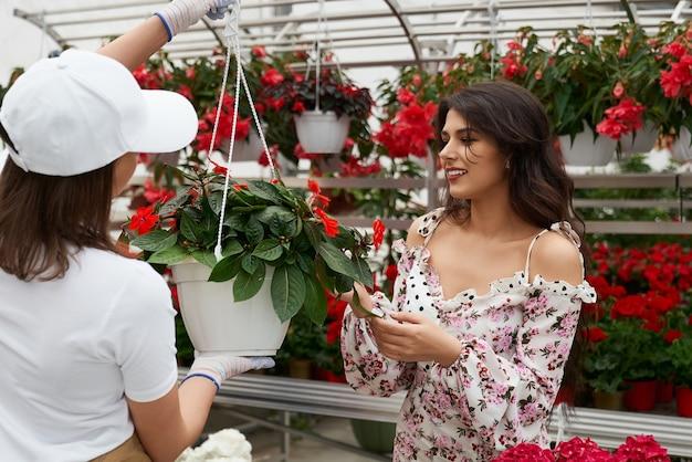 Two women choosing pot with beautiful red flowers