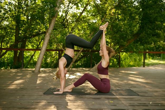 여름 공원에서 그룹 요가 훈련에 균형 운동을 하 고 두 여자. 명상, 야외 운동에 맞는 수업