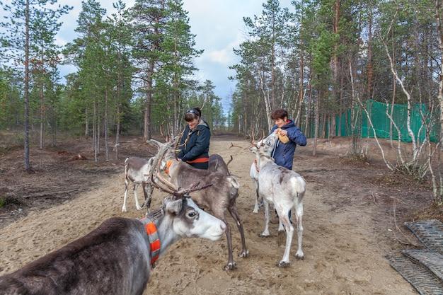Two women feed reindeer, sami, saami village on the kola peninsula, russia. tourist ethnographic parking