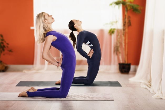 요가 연습 운동복에 두 여자는 스튜디오에서 체조 매트에 ushtrasana 운동 낙타 포즈를 수행
