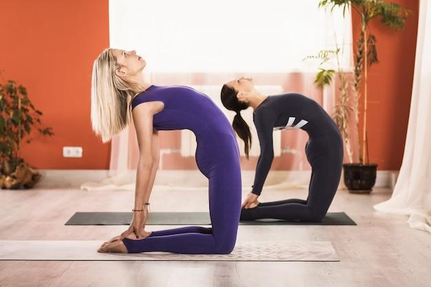 스튜디오에서 훈련하는 동안 유럽 출신의 두 여성이 운동 ushtrasana 낙타 포즈를 수행합니다.