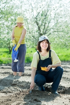 Two  women sows seeds