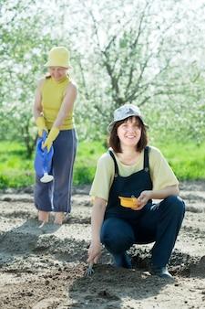 두 여자가 씨앗을 뿌리다