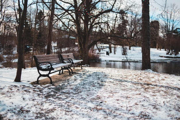 Two wooden benches beside river