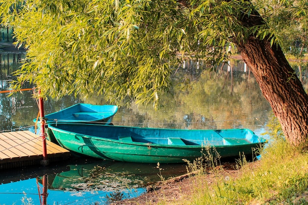 Two wooden boats in a pond under a tree in the setting sun