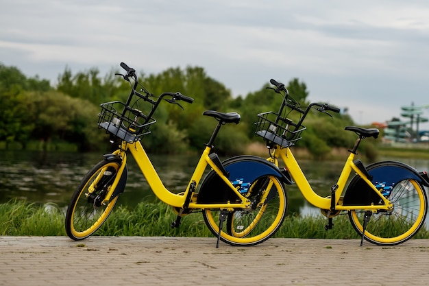 Two yellow city bikes by the lake.
