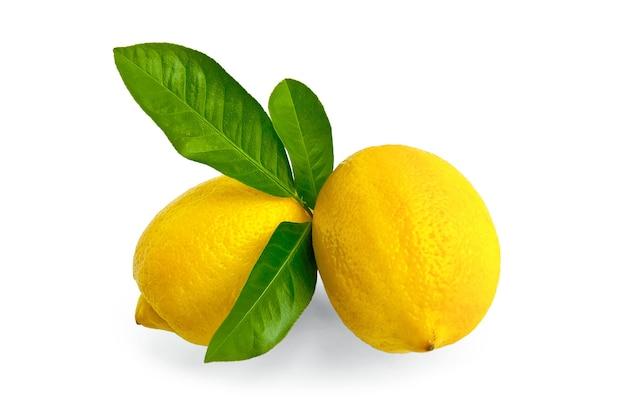 Два желтых целых лимона с зелеными листьями, изолированные на белом фоне