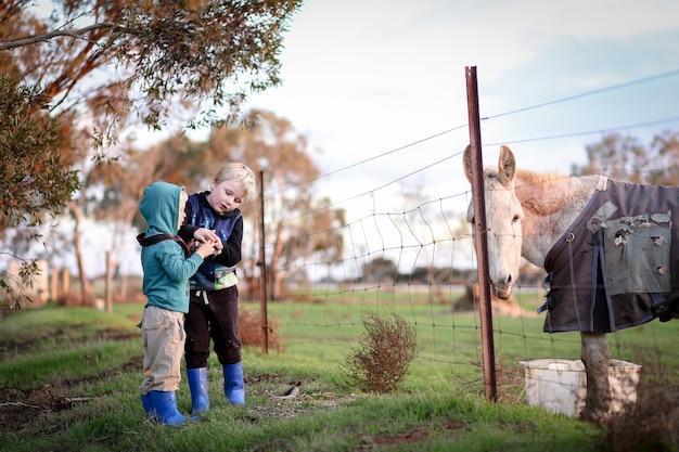 Два молодых брата играют в золотой час