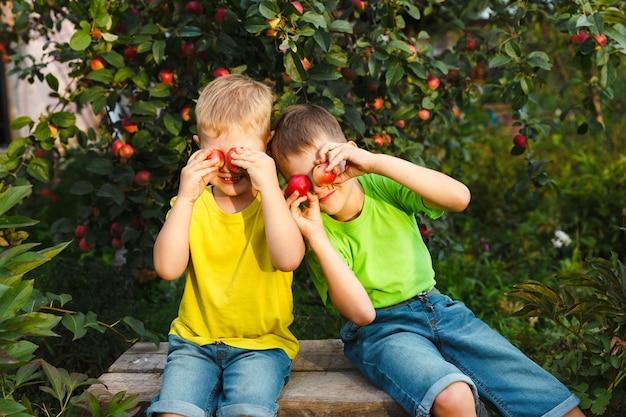 2人の幼い子供男の子は、屋外の緑豊かな庭で収穫された新鮮な有機ジューシーなリンゴを楽しんでいます。