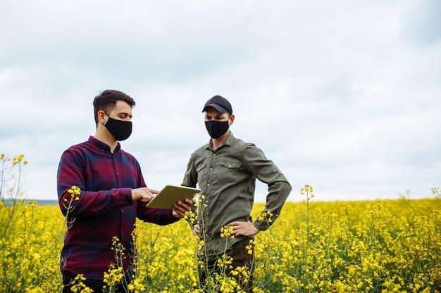 マスクをした2人の若い農民が菜種畑に立ち、タブレットにデータを入力します。