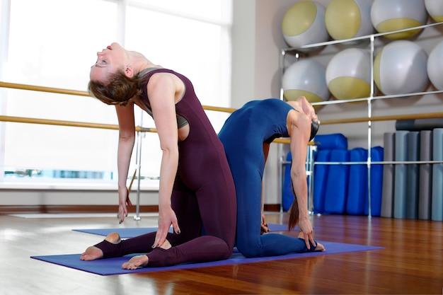 トレーニングルームでペアヨガのエクササイズをしている2人の若いフィットネス女性。健康的なライフスタイル、フィットネス、ヨガ、スポットコンセプト。