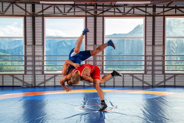 Two young men in blue and red wrestling tights are wrestlng on the of mountains.