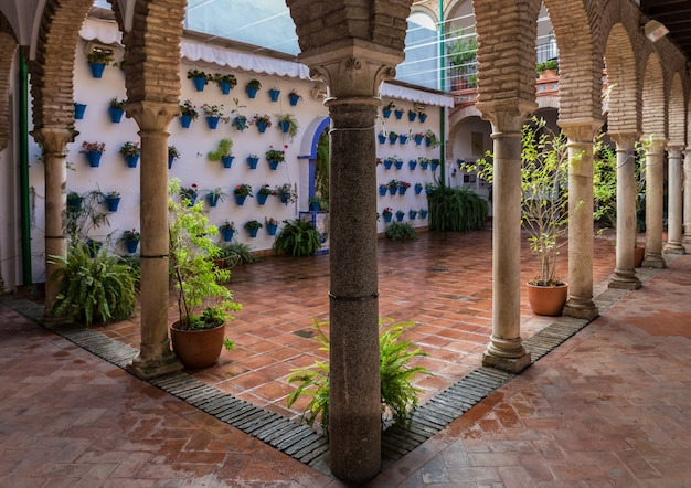 Typical andalusian patio in the old town of cordoba. spain.