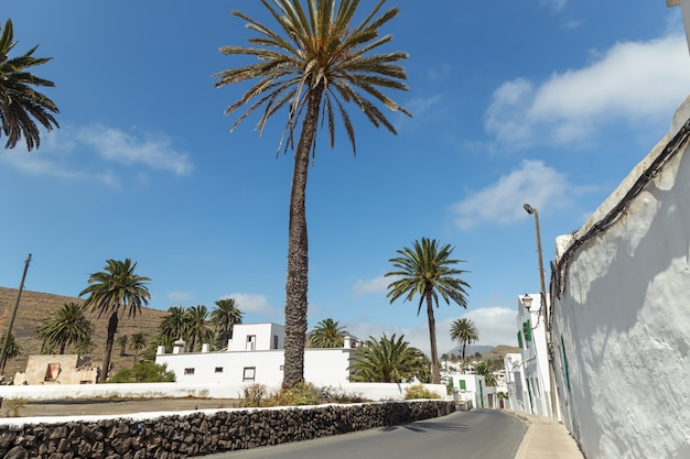 Typical canarian village