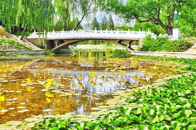 Typical chinese garden,  park with bizarre rocks. beijing. Premium Photo