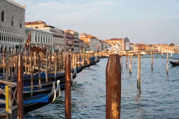Типичные знаменитые гондолы в венеции