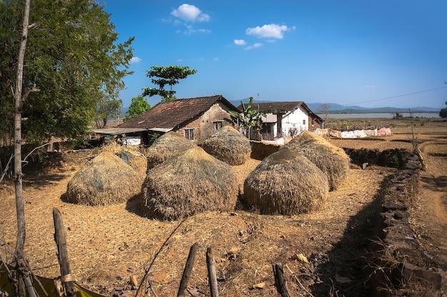 인도의 전형적인 건초 다락방. 건초더미와 농부의 집. 인도 마을의 가난한 사람들의 삶.