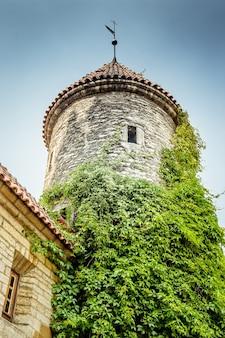탈린, 에스토니아의 전형적인 중세 타워입니다. 레트로 토닝