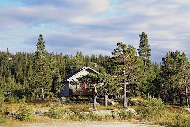 노르웨이의 숨막히는 풍경과 아름다운 녹지가있는 전형적인 노르웨이 시골 별장