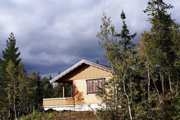 ノルウェーの息を呑むような風景と美しい緑のある典型的なノルウェーの田舎のコテージ