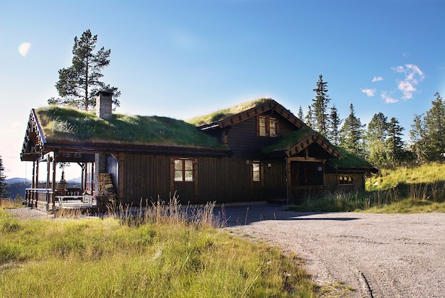 Typical norwegian rural cottage with breathtaking landscape and beautiful greenery in norway