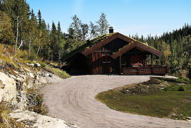 Tipico cottage rurale norvegese con un paesaggio mozzafiato e una splendida vegetazione in norvegia