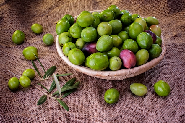 Типичные сицилийские оливки гроздь свежесобранных зеленых оливок в плетеной корзине
