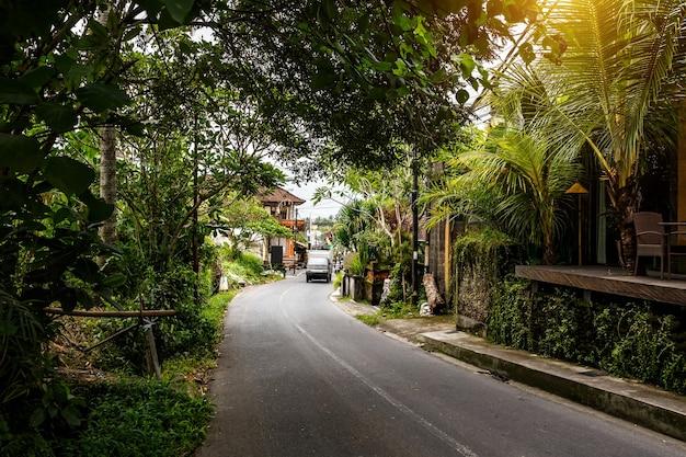 Typical street of bali island.