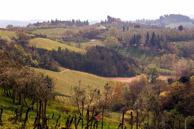 전형적인 토스카나 풍경 - 언덕 위 별장, 사이프러스 골목, 포도밭이 있는 계곡, 시에나(siena) 지방의 전망. 투스카니, 이탈리아