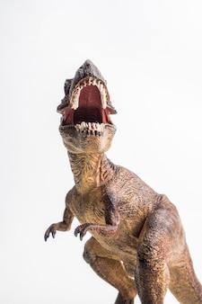 Тиранозавр на белом фоне