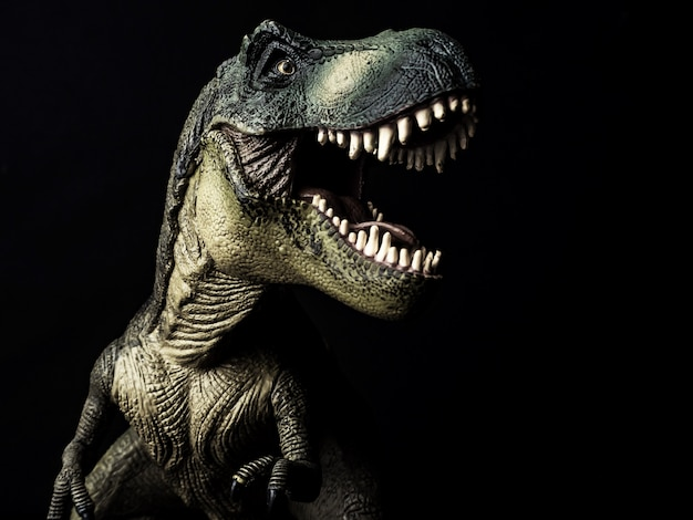 Tyrannosaurus t-rex dinosaur on black  background