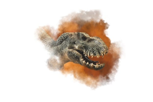 ティラノサウルスt-レックス、白い背景の上の恐竜。
