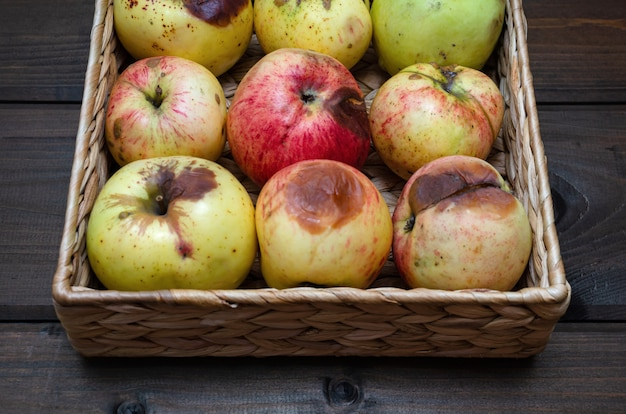 Уродливые яблоки в плетеной корзине на деревянном коричневом столе. закрыть