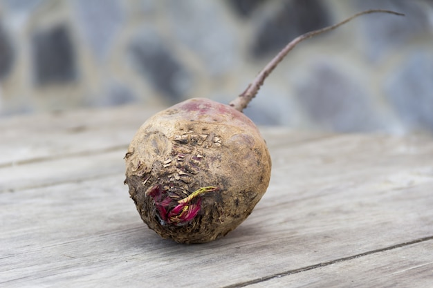 Ugly beet on wood