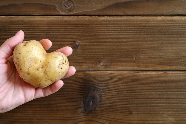 Ugly food. woman's hand holding ugly vegetable a heart shaped potato on a wooden plank table.