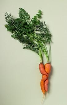녹색 배경에 못생긴 신선한 당근입니다. 개념 유기농 천연 야채입니다. 위에서 볼. 세로 형식.