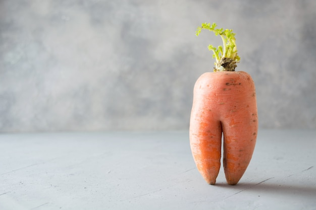 Ugly one organic carrot. space for text.