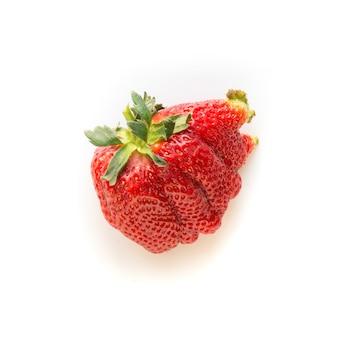 못생긴 한 익은 유기농 딸기 흰색 배경에 고립