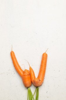 Ugly pure organic carrots picked from garden