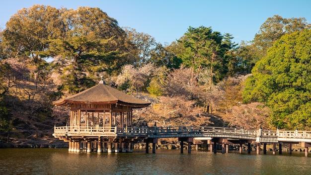 일본 벚꽃이 만발하는 동안 나라 공원에 있는 연못 위의 우키미도 홀. 사기이케 호수에 떠 있는 육각형 사원
