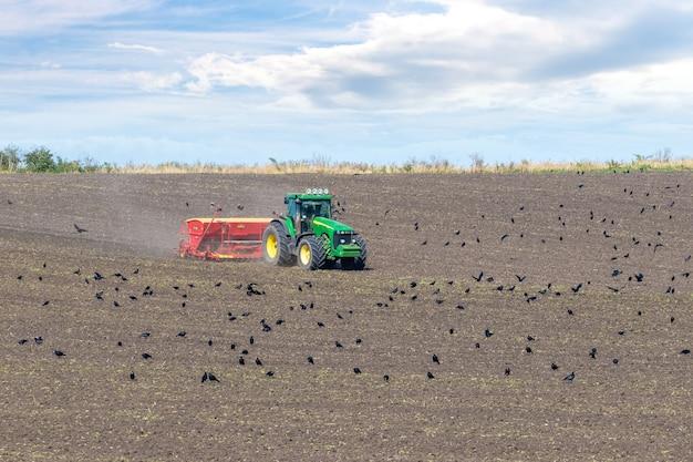 Украина, хмельницкая область, сентябрь 2021 года. трактор с сеялкой в поле сеет зерно озимой пшеницы. вороны в осеннем поле возле трактора