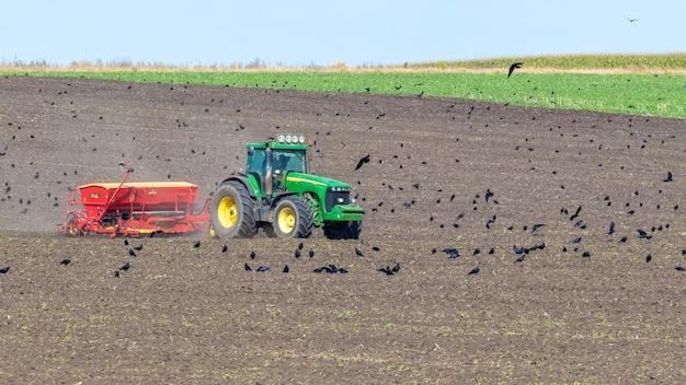 우크라이나, 크멜니츠키 지역, 2021년 9월. 밭에 파종기가 있는 트랙터가 겨울 밀을 뿌립니다. 트랙터 근처 가을 들판의 까마귀
