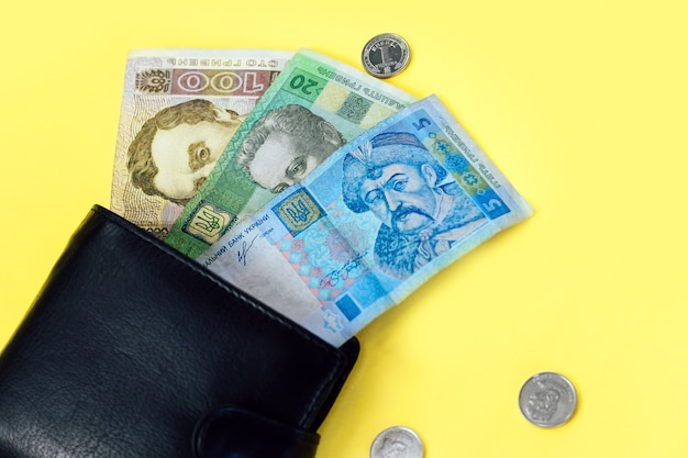 Ukrainian small money hryvnia and a penny in a leather black wallet.